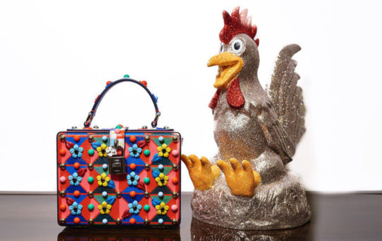 YEAR OF THE FANCY FIRE ROOSTER: SHOW OFF BAGS